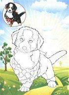 Собаки. Раскраска с цветным фоном