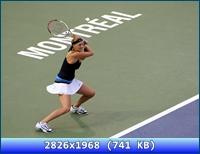 http://i5.imageban.ru/out/2012/11/19/a2c7268571326420970bf3f5cb05b4fe.jpg