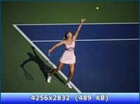 http://i5.imageban.ru/out/2012/11/20/03eda441e4913b8fe8769c3e9bdc0351.jpg
