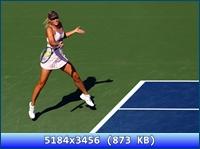 http://i5.imageban.ru/out/2012/11/20/098afc5c4da8c9b709b79ecf2528b556.jpg