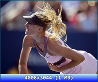 http://i5.imageban.ru/out/2012/11/20/ad344331d70d7e339c9e74968f5c18ce.jpg