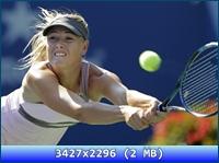 http://i5.imageban.ru/out/2012/11/20/adb816f8065b1374aadf6d73f350dcce.jpg