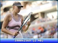 http://i5.imageban.ru/out/2012/11/20/bd981aea92691384f460b053121d4669.jpg