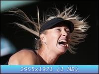http://i5.imageban.ru/out/2012/12/11/561483ae7c4066b752abb0d0f1eadd8f.jpg
