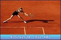 http://i5.imageban.ru/out/2012/12/11/e43f9c52d5bf88e8b25488054266ee76.jpg