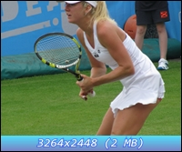 http://i5.imageban.ru/out/2012/12/12/a065219b21e0405301ebdb9ac34fbf78.jpg