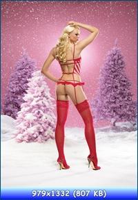 http://i5.imageban.ru/out/2012/12/29/622d240cdb71d059cf3b25c9d4679b07.jpg