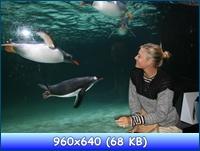 http://i5.imageban.ru/out/2012/12/29/fafb35d8bf65d90fdc25968cc0571ae4.jpg