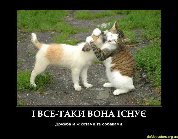 demotivators.org.ua-49185-3(1).jpg