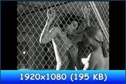 http://i5.imageban.ru/out/2013/04/27/75cb1dbb6861caa72a2fc6884d5f7742.jpg