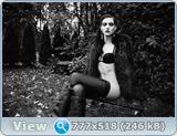 http://i5.imageban.ru/out/2013/04/30/93ea79fd59c714ed163ff82c2552b419.jpg