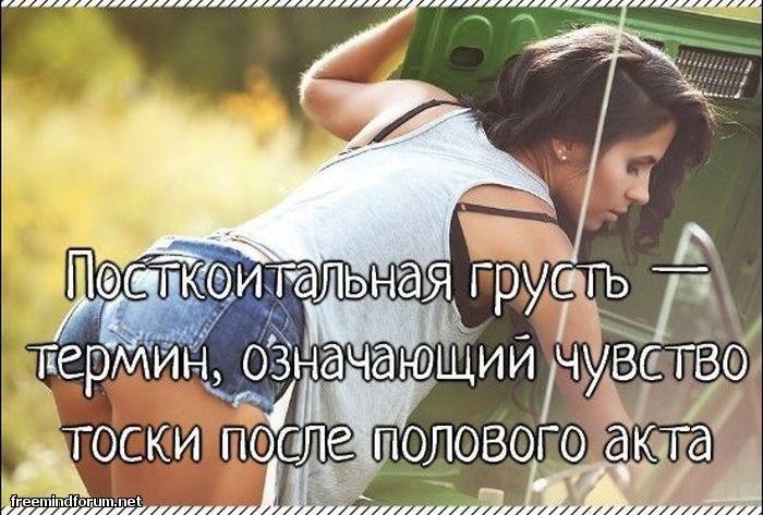 http://i5.imageban.ru/out/2013/05/19/1c78833b20d081b0e3a1358e4ffd4834.jpg