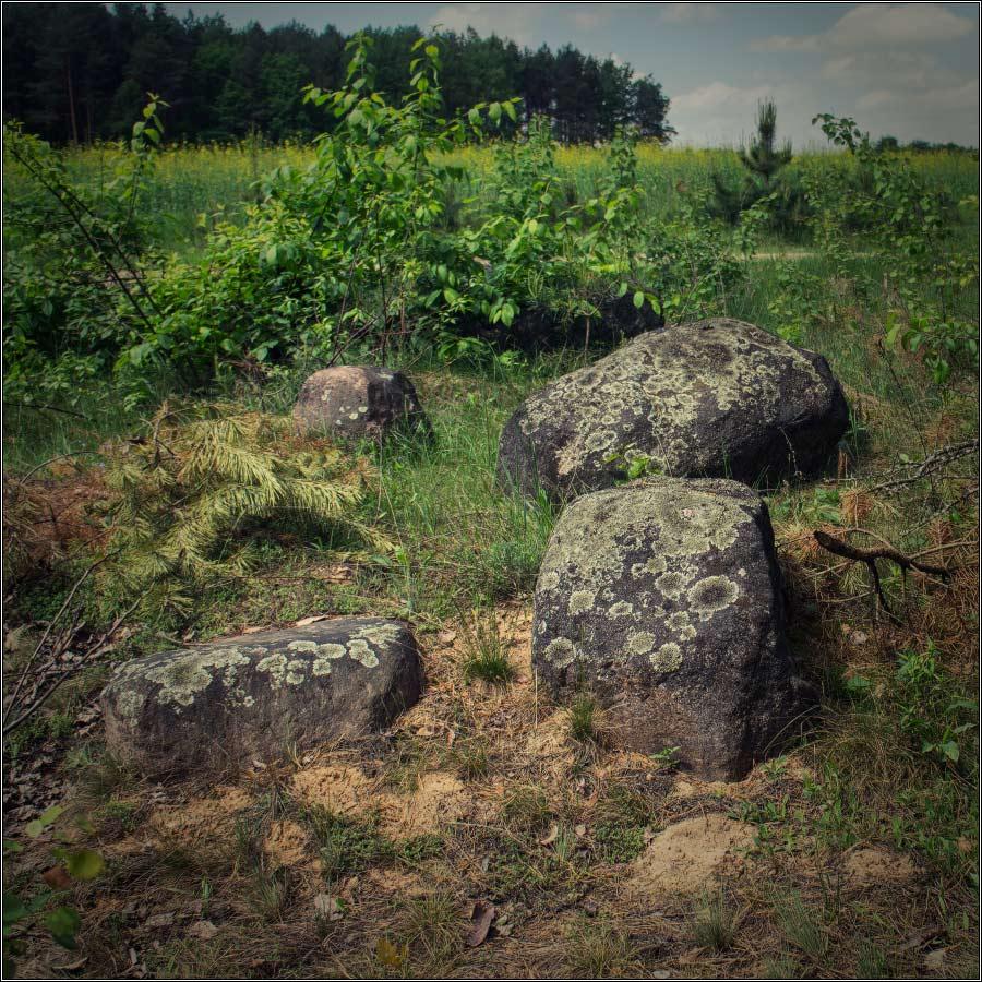 http://i5.imageban.ru/out/2013/05/26/2ffaed2de9e2373a2f33a594d7d8d31b.jpg