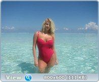 http://i5.imageban.ru/out/2013/08/05/1af92a3633ae3bce90316d23971e6bdf.jpg