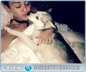 http://i5.imageban.ru/out/2013/08/05/833a3d3cc395d4b812de52dc186e098d.jpg