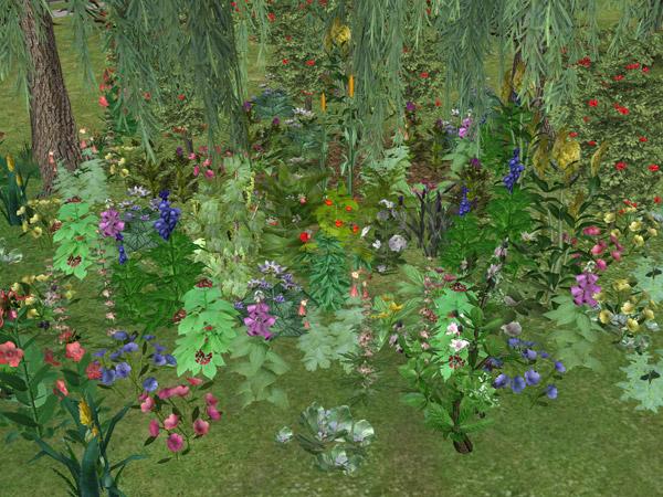 k8-Eponymous_Garden.jpg