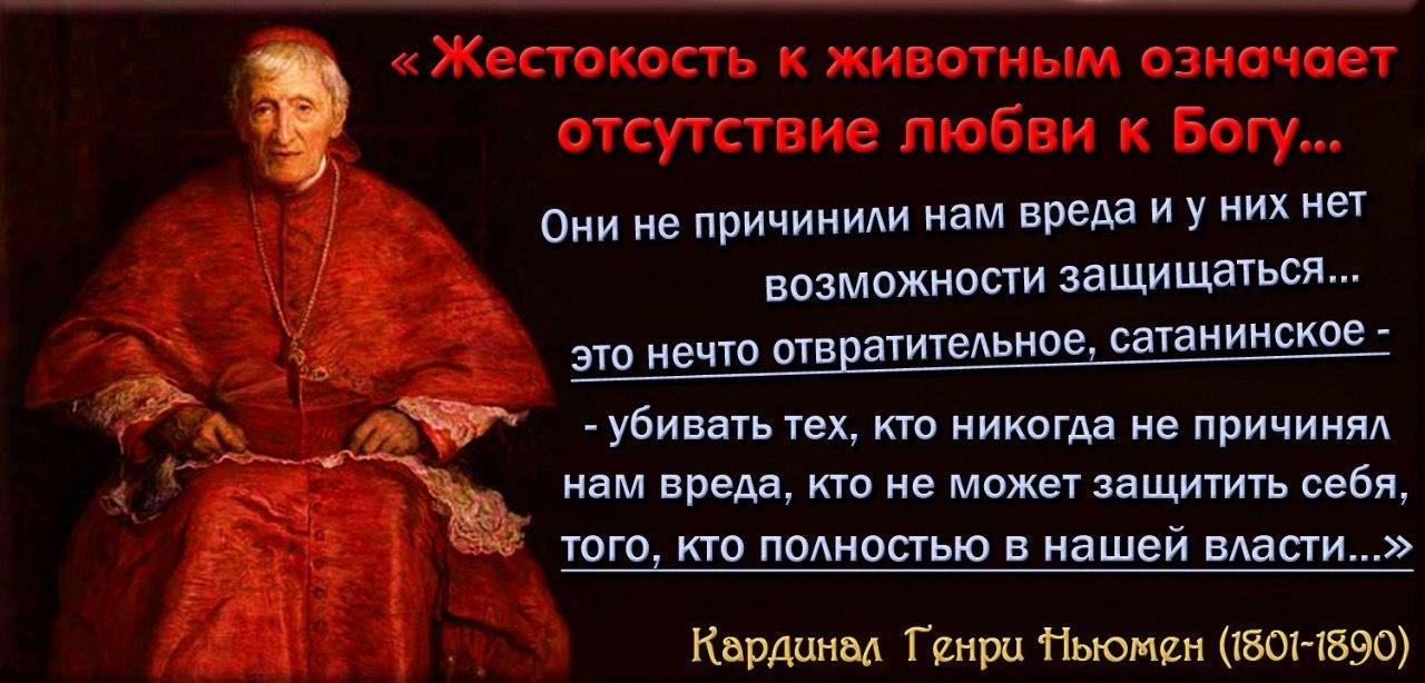 Кардинал Генри Ньюмен.jpg
