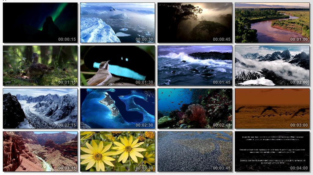 http://i5.imageban.ru/out/2013/09/16/3f1d1e36ed19f927f212e560e4e95491.png