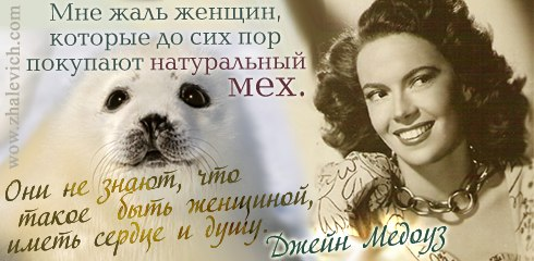 https://i5.imageban.ru/out/2013/10/10/ad329f12cea6dbc5cf07f1ff97390e09.jpg