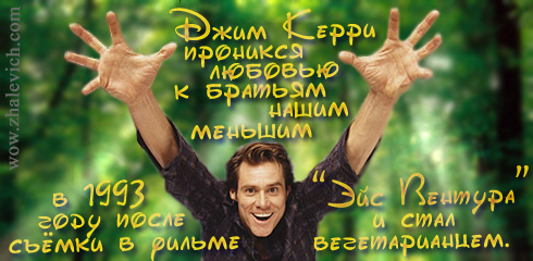 http://i5.imageban.ru/out/2013/10/10/efb7545a36d276f30b65e85de2fc33f3.jpg
