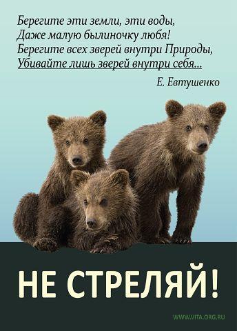 http://i5.imageban.ru/out/2013/10/11/25c1a0dd0d510733ad0303bf24bbd395.jpg
