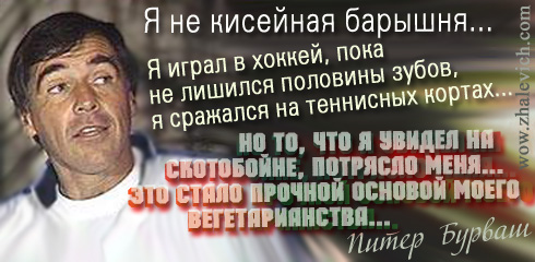 http://i5.imageban.ru/out/2013/10/11/66455e2cc5e2330db68ba02495fcb44d.jpg