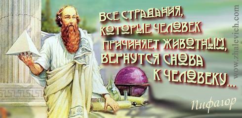 http://i5.imageban.ru/out/2013/10/11/f1b24fa037e5f4fcf955406acd3aed07.jpg