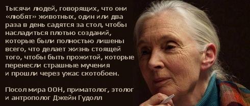 http://i5.imageban.ru/out/2013/10/11/f9f741dbd87c9b8393c81fe7835de918.jpg