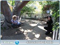 http://i5.imageban.ru/out/2013/10/20/d6e344617ee91b1fec835c70d8c54fc9.jpg