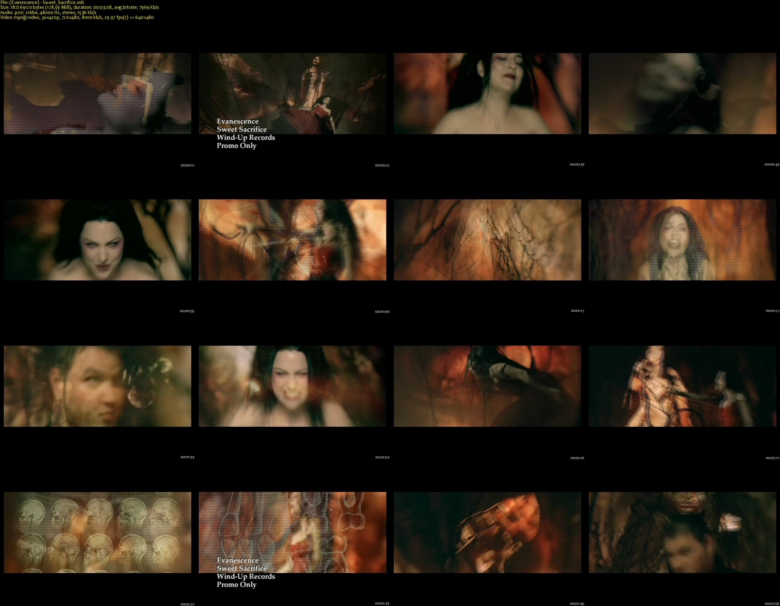 (Evanescence) - Sweet_Sacrifice_s.jpg
