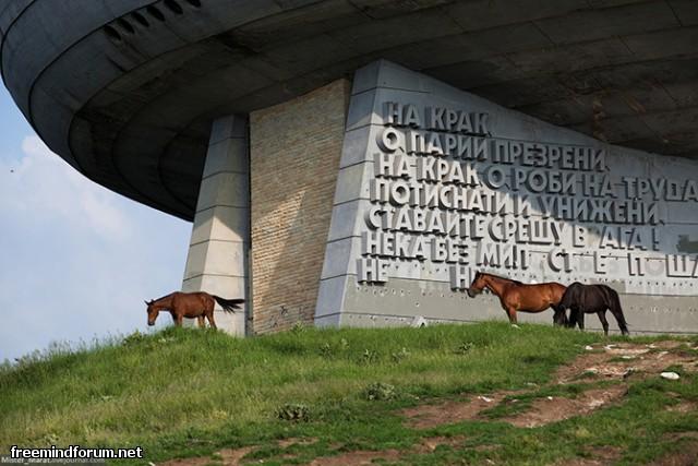 http://i5.imageban.ru/out/2013/11/17/9ba0252d99ca590c2a411a4274a722d7.jpg