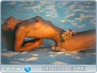 http://i5.imageban.ru/out/2013/12/14/7e5709c324b974b8e2c7c6a36cb4f0ab.jpg