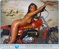 http://i5.imageban.ru/out/2013/12/19/8fbf4f81686bbf12c123406fe34e5dc2.jpg