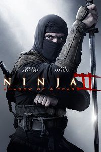 Ниндзя 2 / Ninja: Shadow of a Tear (2013) WEB-DLRip-AVC | L2