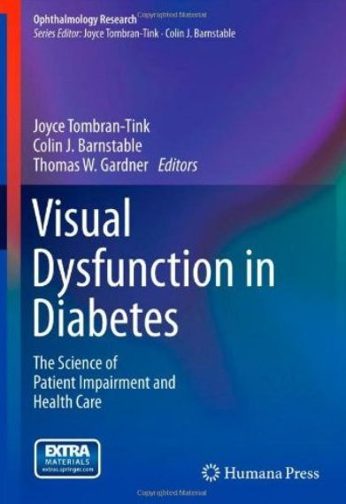 Visual Dysfunction in Diabetes The Science of Patient Impairment and Health Care (Ophthalmology Rese...