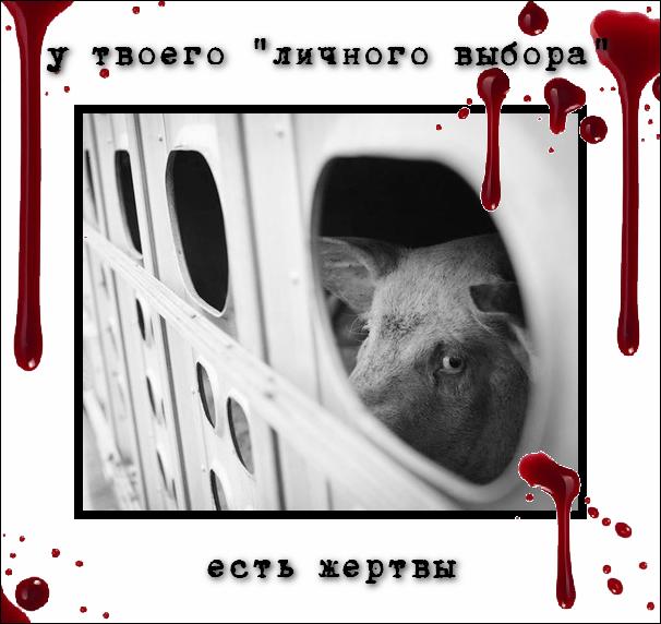 http://i5.imageban.ru/out/2014/01/07/9cfe691f5d2bec2e1cc8d3cbfeb9279c.png