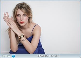 http://i5.imageban.ru/out/2014/07/21/771018f7826f40e7bfacbf0c843f65f5.jpg