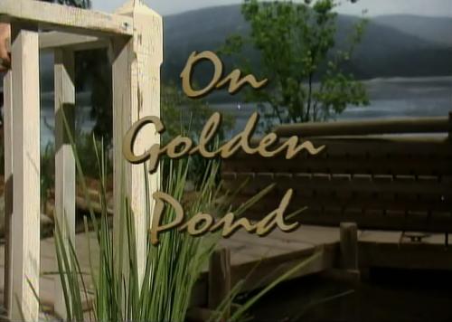 На золотом озере / На золотом пруду / On Golden Pond (Эрнест Томпсон / Ernest Thompson) [2001, США, Мелодрама, драма, SATRip] MVO