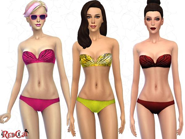 Strapless Bikini Set.jpg