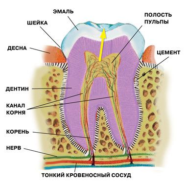 http://i5.imageban.ru/out/2014/11/17/3a14eb91ce6f3c1acd277c26c869bd9e.jpg