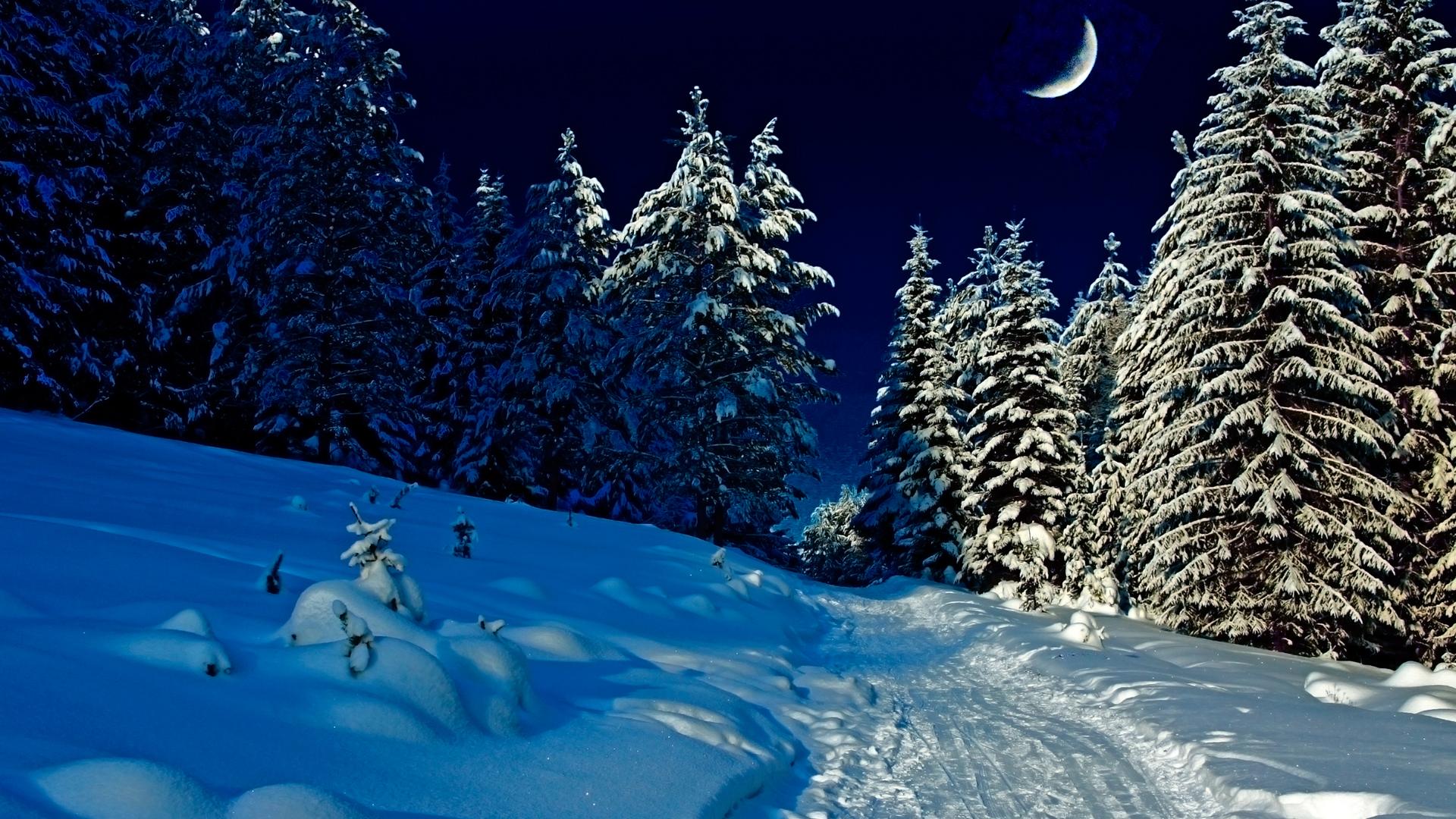 Панорама ночная