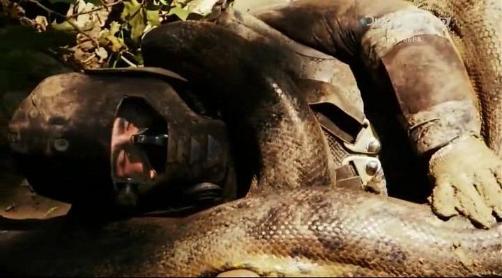 Discovery. Съеденный заживо / Anaconda: Eaten Alive (2014) HDTVRip