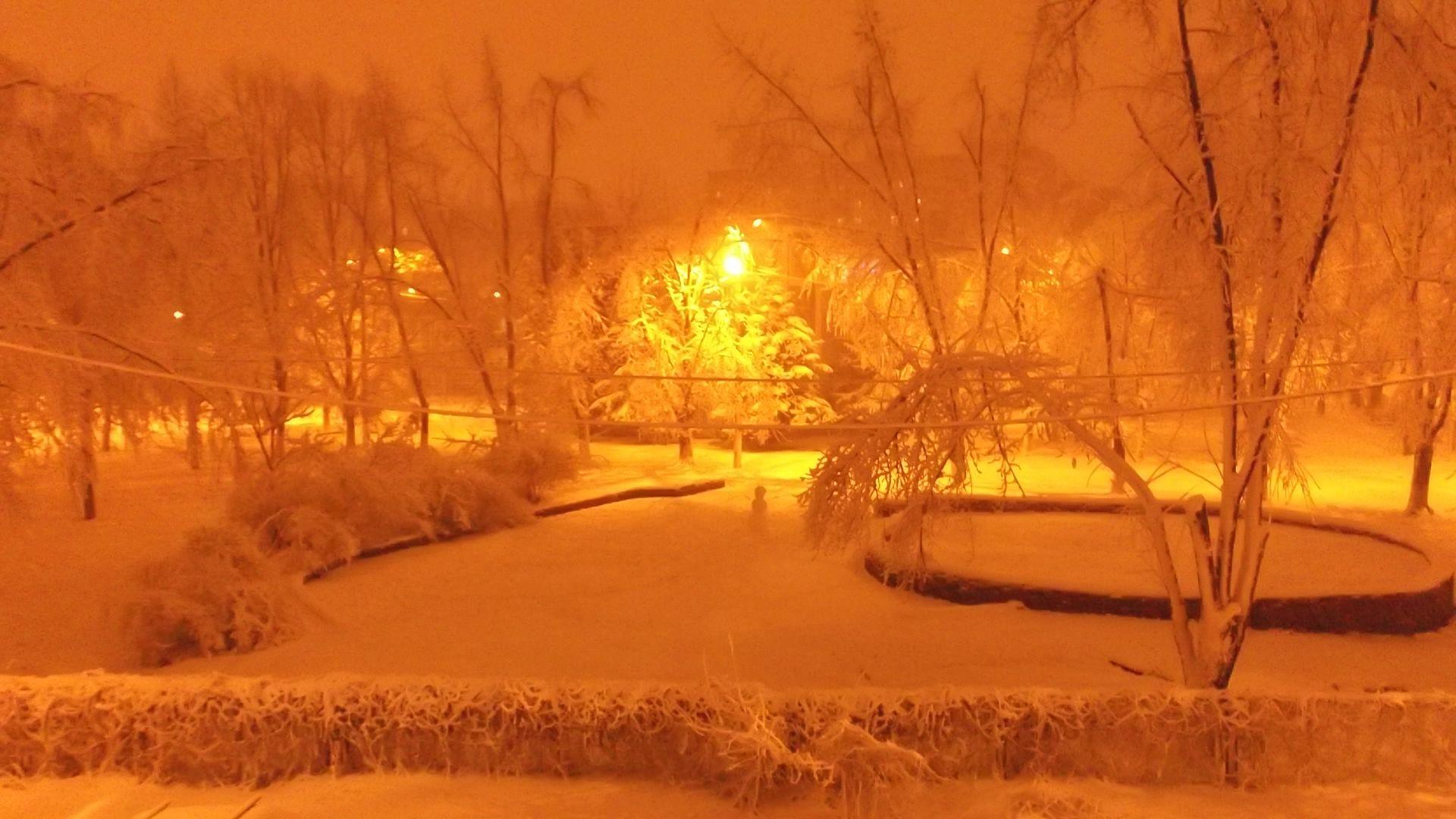 просто снег.JPG