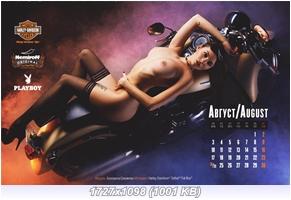 http://i5.imageban.ru/out/2015/01/11/74f9cf091d271cc74007edc196813a8d.jpg