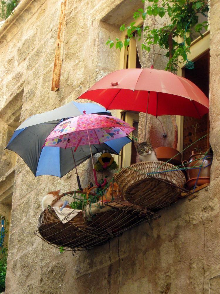Балкон для котеек