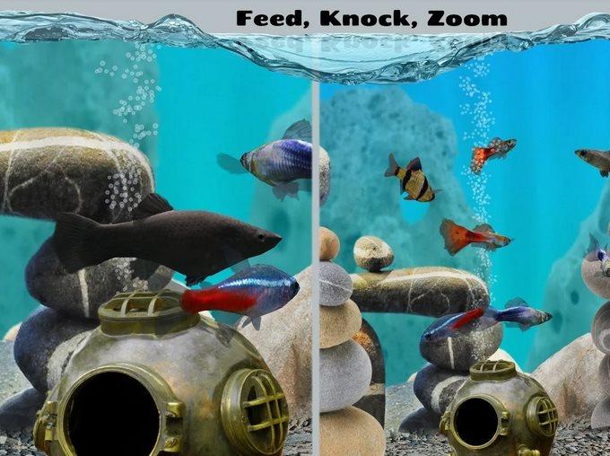 Fish Farm 2 1.3.9 [En]