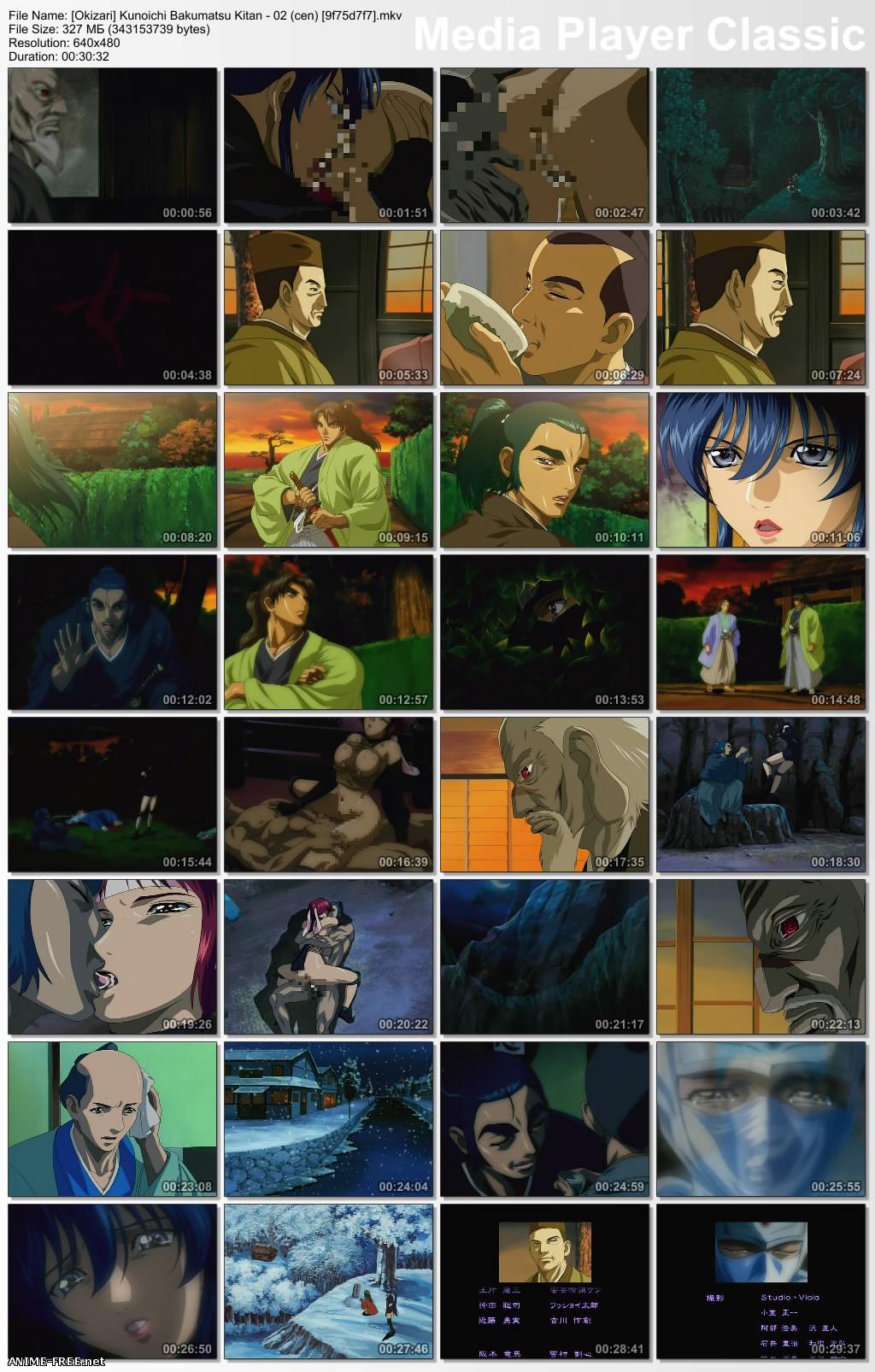 Kunoichi Bakumatsu Kitan / The Last Kunoichi / Последняя девушка-ниндзя [2 из 2] [Ptcen] [RUS,ENG,JAP] Anime Hentai
