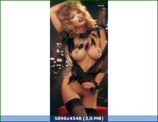 http://i5.imageban.ru/out/2015/08/21/5e0bf0f9a247bf163373fbcb8eefa947.png
