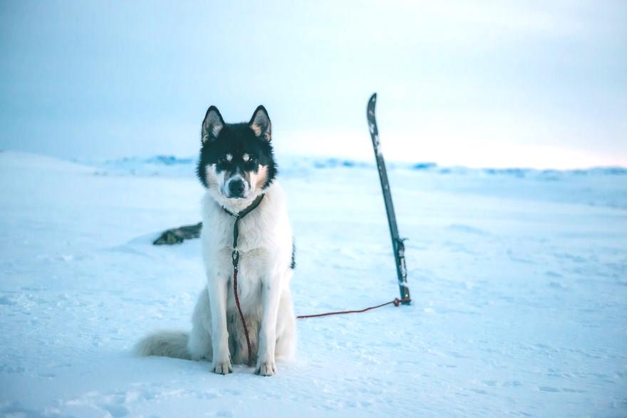 Путешествие Henrik Vikse по родной Норвегии