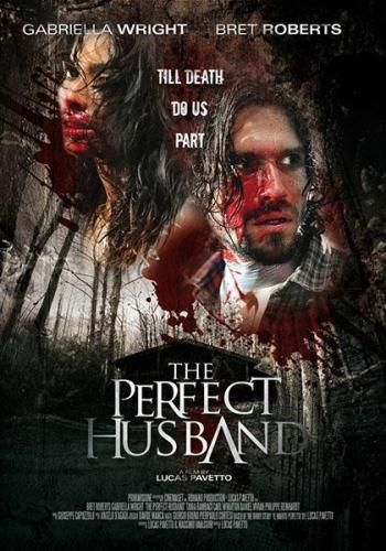 ��������� ���/The Perfect Husband